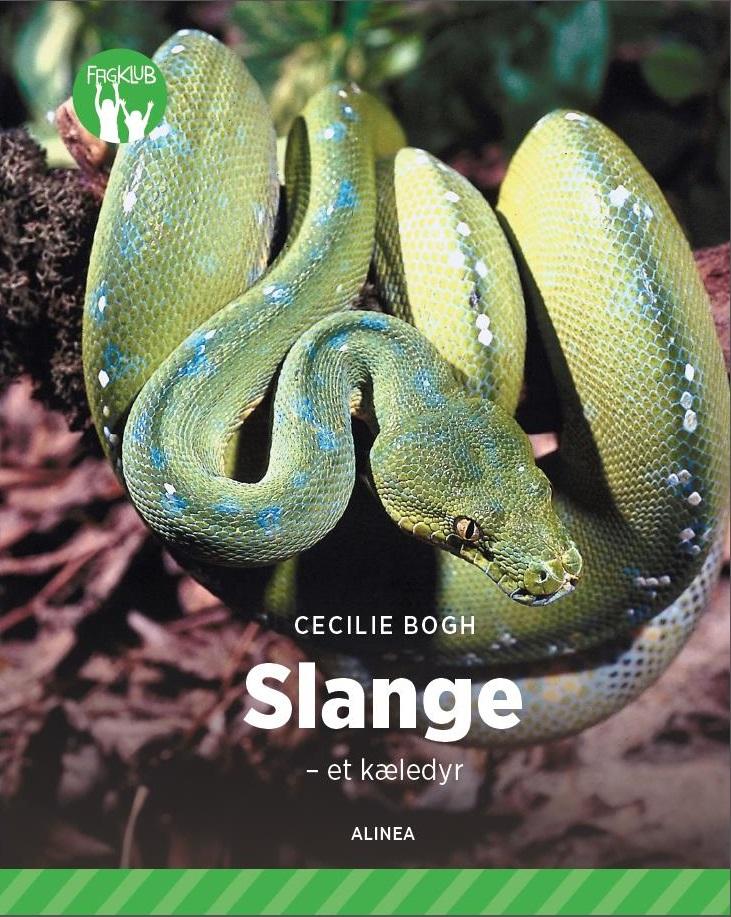 kan slanger høre